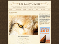 Www.dailycoyote.net